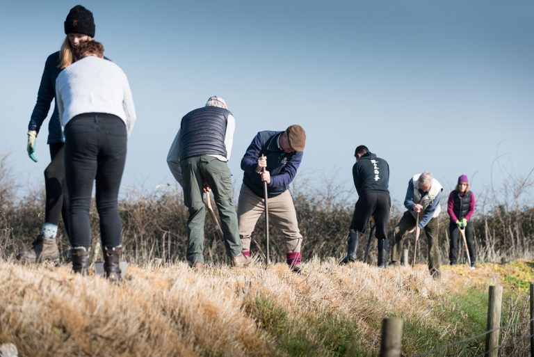 Volunteers planting a bat friendly hedge in Beer