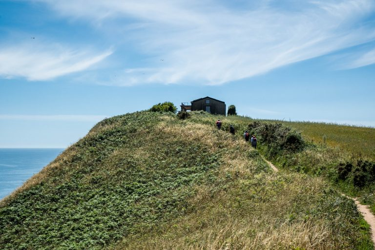 Photograph of the WW2 observation post in East Devon ahead of restoration works